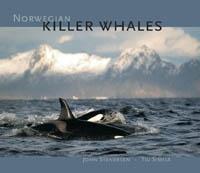 Norwegian Killer Whales