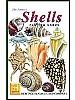 Skjell og konkylier - Shells