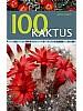 100 Kaktus