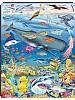 Puslespill - Hval og dyr i sørlige hav