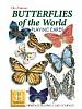 Verdens sommerfugler - Butterflies of the World