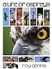 A Life of Ospreys